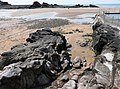 Rock outcrop, Summerleaze beach, Bude - geograph.org.uk - 1304672.jpg