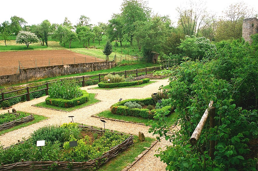 Rodemack, the medieval garden