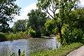 Rokyni Lutskyi Volynska-Rokynivskyi nature reserve-view from dam-1.jpg