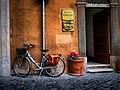 Rome's bikes 04.jpg