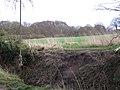 Ropeswing and alderwood - geograph.org.uk - 1777642.jpg