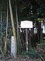 Ruin of the Kamizue castle.JPG