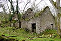 Ruined cottage near Waunfach Old Forge - geograph.org.uk - 713802.jpg