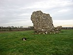 Ruined tower, Corballis, Co. Meath - geograph.org.uk - 634790.jpg