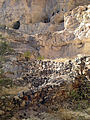 Ruins in Montezuma Castle NM 2.JPG