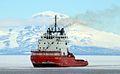 Russian icebreaker Vladimir Ignatyuk.jpg