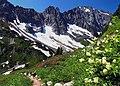 Sahale Arm, North Cascades National Park, Washington State, U.S.A.jpg