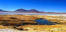 维拉科柳山 (玻利维亚-智利)