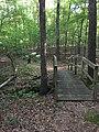 Sandstone Nature Trail bridge.jpg