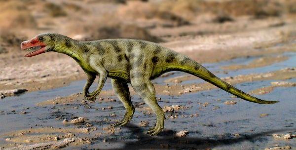 Sanjuansaurus NT