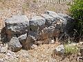 Santuario di Monte Sant'Angelo. Terrazza mediana. Muro in opera poligonale appartenente alla prima fase del santuario (IV sec. a.C.) 1.JPG