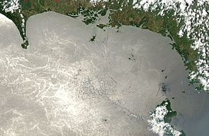 Satellite image of Gulf of Chiriquí in March 2003.jpg