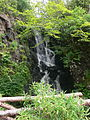 Scotland - Dunvegan Castle 43.JPG