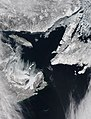 Sea ice in the Gulf of St. Lawrence.jpg