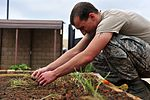 Shaw squadron grows garden for Earth Day 120420-F-OW876-441.jpg