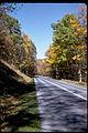 Shenandoah National Park SHEN9207.jpg
