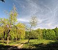 Shevchenka park Zvenygorodka Cherk-479.jpg