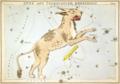 Sidney Hall - Urania's Mirror - Lynx and Telescopium Herschilii.png