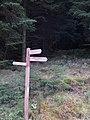 Signpost, Cloich Forest. - geograph.org.uk - 269049.jpg