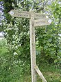 Signpost at SY599948 - geograph.org.uk - 437541.jpg