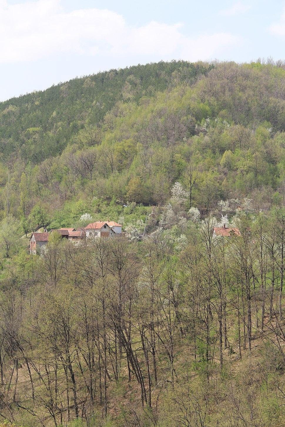 Sitarice - opština Valjevo - zapadna Srbija - panorama 6