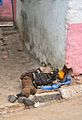 Sleeping Rough, Harar (14447313311).jpg