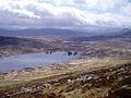 Slopes of Beinn na Lap - geograph.org.uk - 177744.jpg