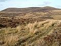 Slopes of Little Hill - geograph.org.uk - 1209144.jpg