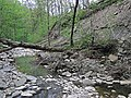 Small landslide (Roaring Run, Warren County, Ohio, USA) 5 (30566457237).jpg