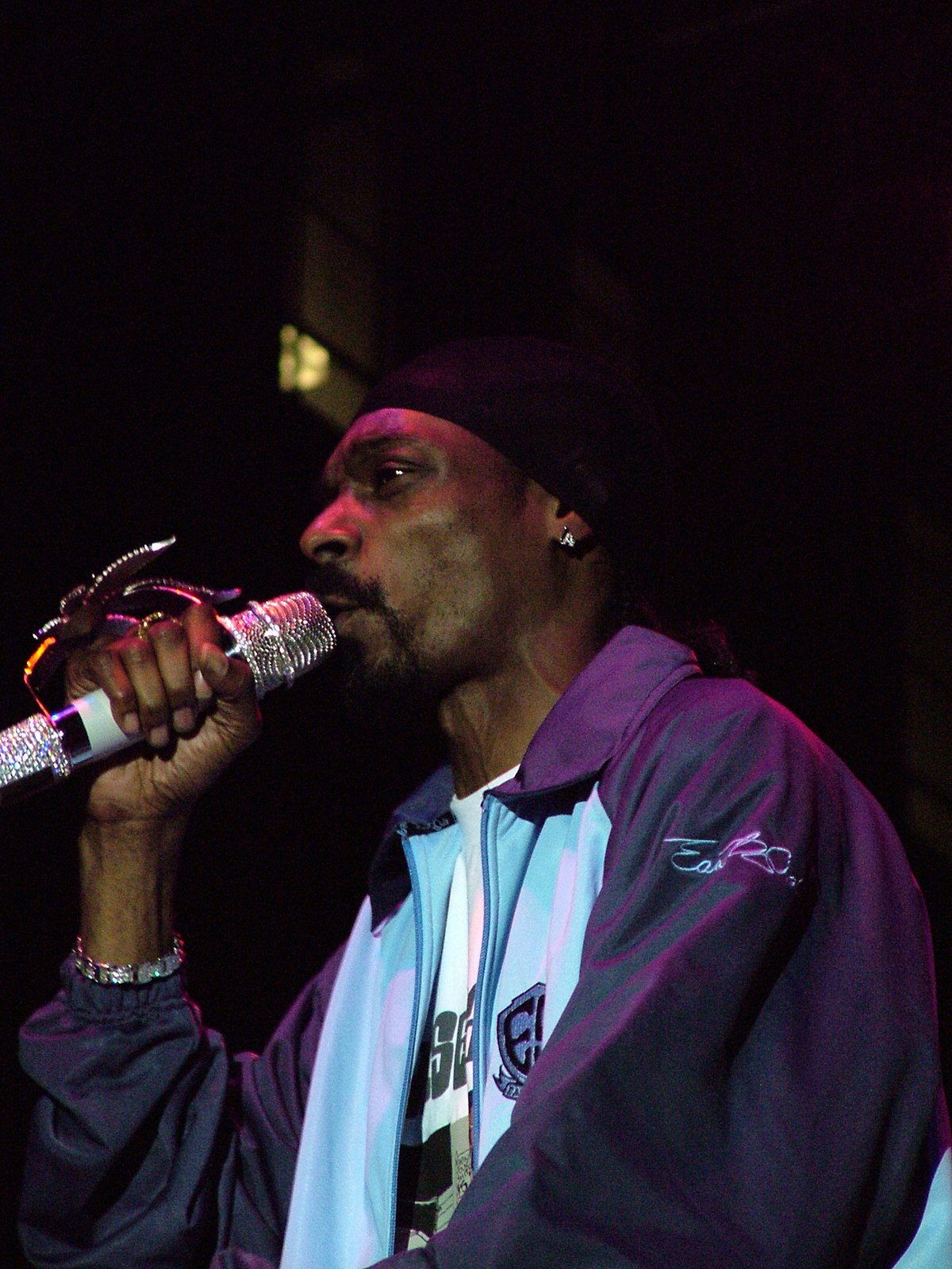 Discografia Di Snoop Dogg Wikipedia