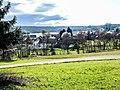 Soppe-le-Haut, vu de la route de Guewenheim.jpg