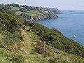 South West Coast Path above Forest Cove - geograph.org.uk - 535268.jpg