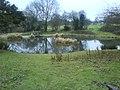 Southdown pond - geograph.org.uk - 908489.jpg