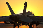 Southern Strike 15 EA-18G at sunset 141030-Z-YM847-031.jpg