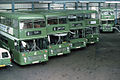 Southern Vectis NBC bus Bristol VR ECW ODL 657R and others in Ryde depot, Isle of Wight August 1979.jpg