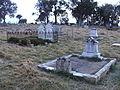Southwell graves, Weetangera.JPG