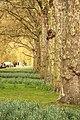 Spring in London (6973588698).jpg