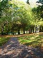 St Ann's Well Gardens - geograph.org.uk - 590483.jpg
