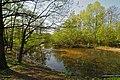 Steenbeek - Steenfoortdiek.jpg