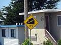 Steep road in Pacifica Ca.jpg