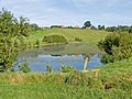 Stile and pool, South of Radbrook - geograph.org.uk - 972898.jpg