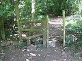 Stile into Parson's Allotment - geograph.org.uk - 522155.jpg