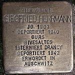 Stolperstein Siegfried Herrmann Neidenstein.jpg