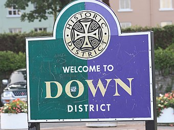 Logo of Down District Council showing the cross pattee Strangford (18c), August 2009.JPG