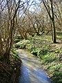 Stream, Westenden Wood - geograph.org.uk - 352510.jpg