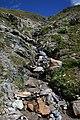 Stream near Tiejerflue.jpg