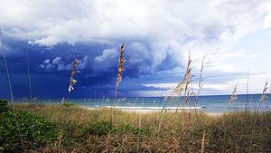 Hutchinson Island (Florida) - Image: Stuart Hutchinson Island stormoats 02Q