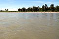 Susitna River, June 2015.JPG
