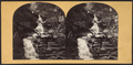 Sylvan (Kaaterskill) Cascade, Catskill, from Robert N. Dennis collection of stereoscopic views.png