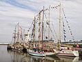 Tall Ship races Harlingen 2014 08.jpg